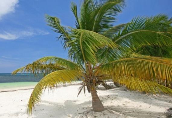 Белый песок на пляже - повод для жалоб британцев