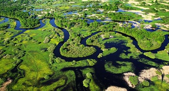 Белорусский национальный парк Припятский