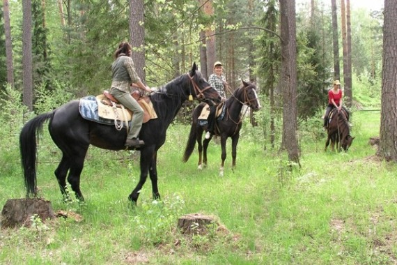 Конные прогулки по территории парк-отеля