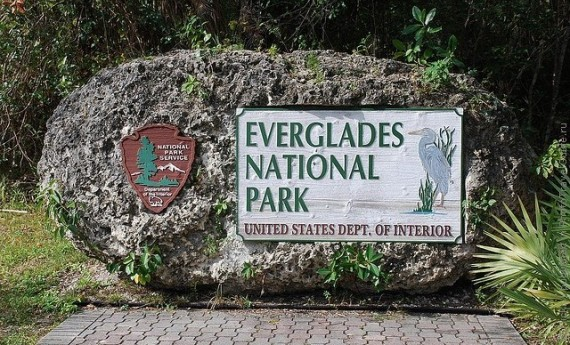 Национальный Парк Эверглейдс, США
