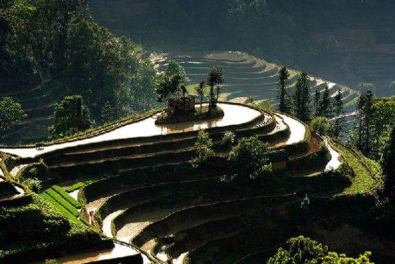 Филиппины: рисовые террасы в Банауэ