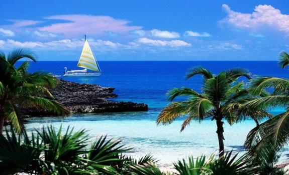 Море. Пальмы. Яхта.