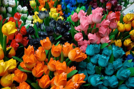 Тюльпаны стамбульского фестиваля