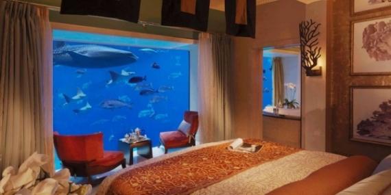 Подводные номера в отелях ОАЭ