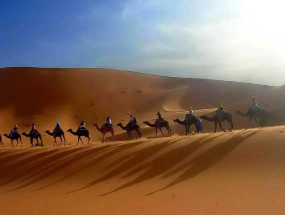 Такой караван можно увидеть на экскурсии в пустыню Сахару