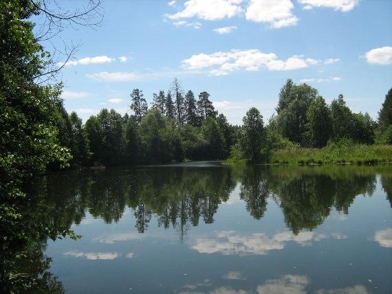 Экологический туризм: отдых на лоне природы
