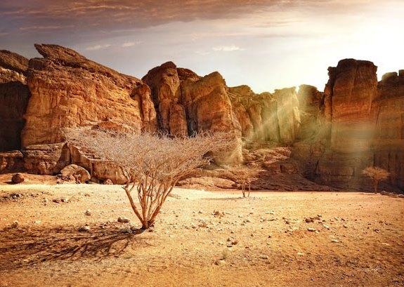Израиль, ущелье царя Соломона