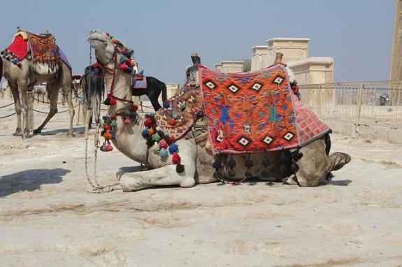Почувствуйте жизнь бедуинов