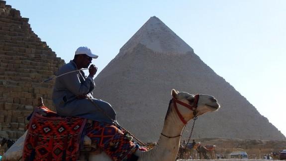 Туристов охотно катают на верблюдах