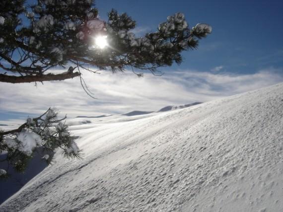 Зимой на Лаго-Наки катаются на лыжах