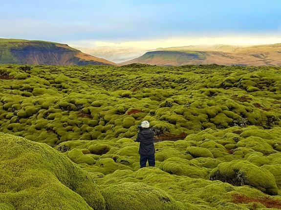 Исландия - страна льдов и мхов