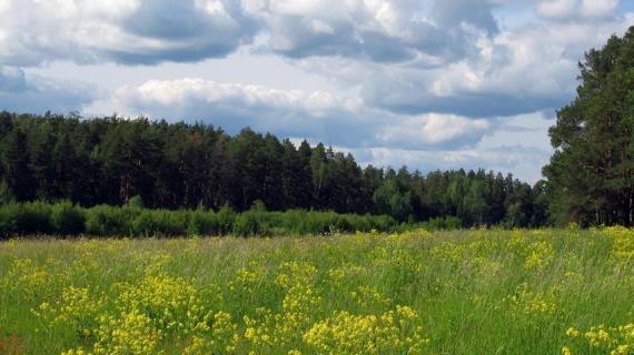 Московская область – климатическая сокровищница средней России