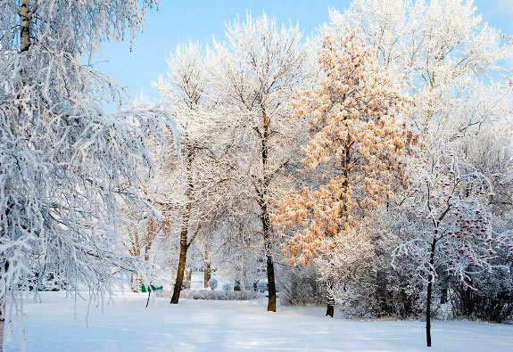 Зима в Уфе